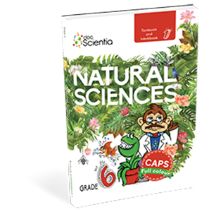 Picture of Doc Scientia Grade 6 Textbook and Workbook Book 1 Natural Sciences and Technology FULL COLOUR